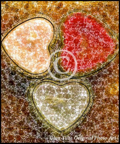 Painted Valentines #14 by Joy Tillis Original Photo Art
