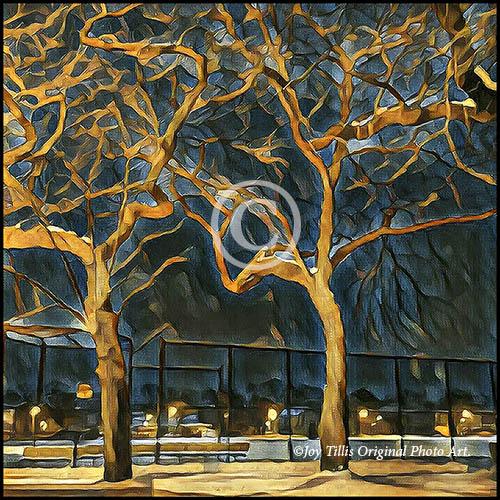 TreesOfWinter_eT.jpg